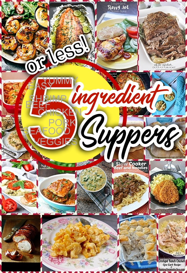 Easy 5 ingredients or less recipes for simple family suppers easy 5 ingredients or less recipes for simple family suppers dreaming in diy forumfinder Gallery